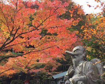 そうだ京都へ行こう・・・じゃないけれど